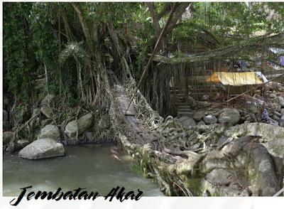 Tempat Wisata Sumatera Barat Yang Kekinian Jembatan Akar