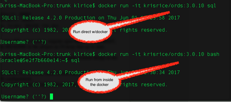 Oracle REST Data Services and Docker
