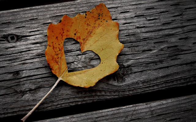 Herfstblad met liefdes hartje op hout