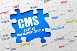 Mengenal CMS ( Content Management System )