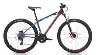Daftar Harga Sepeda Polygon Semua Tipe Terbaru