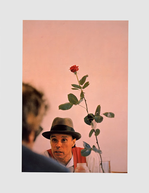 Rose für direkte Demokratie