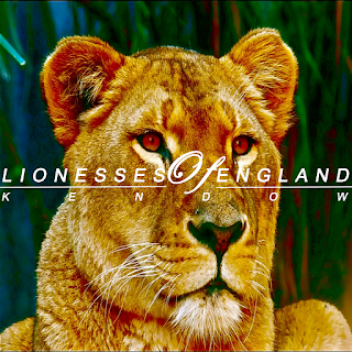 Kendow's song, Lionesses Of England is a dance pop single dedicated to the UK Womens football team - Listen and download on CD Baby