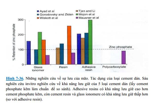 nghiên cứu độ lưu của mão răng