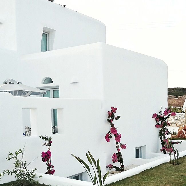 Jelena Zivanovic Instagram @lelazivanovic.Glam fab week.Paros houses and hotels.