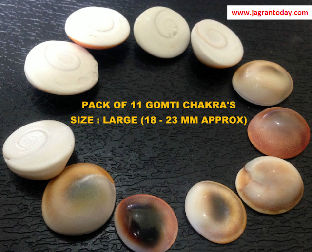 Gomati Chakra or Smaadhaan