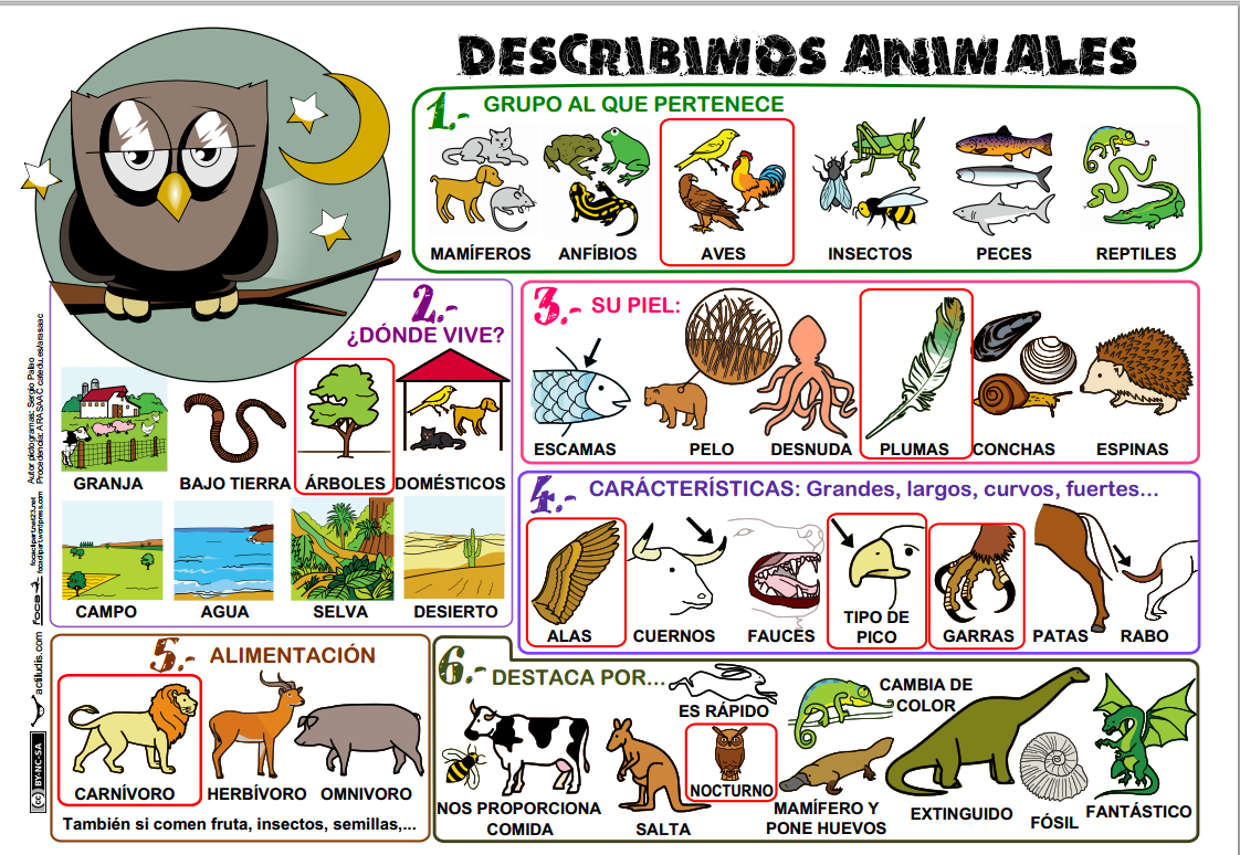 https://dl.dropboxusercontent.com/u/6343438/3%C2%BA/Describir-Animales.pdf
