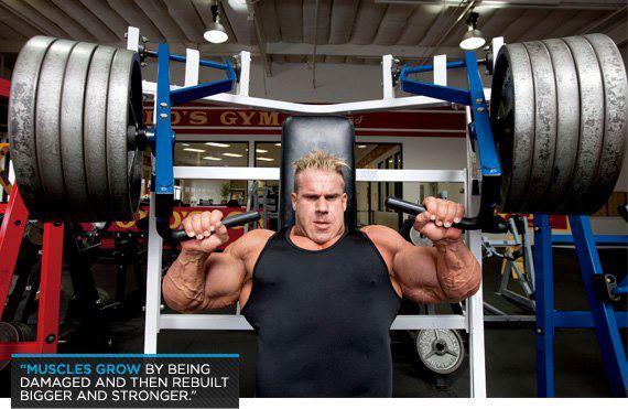 Body Building Motivational Wallpapers | Bodybuilding ...