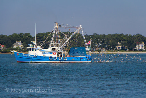 Hilton Head Shrimp Boat