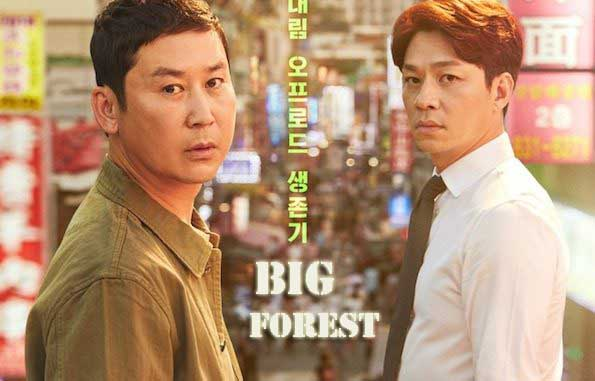 Sinopsis Drama Big Forest Episode 1-16 (Lengkap)