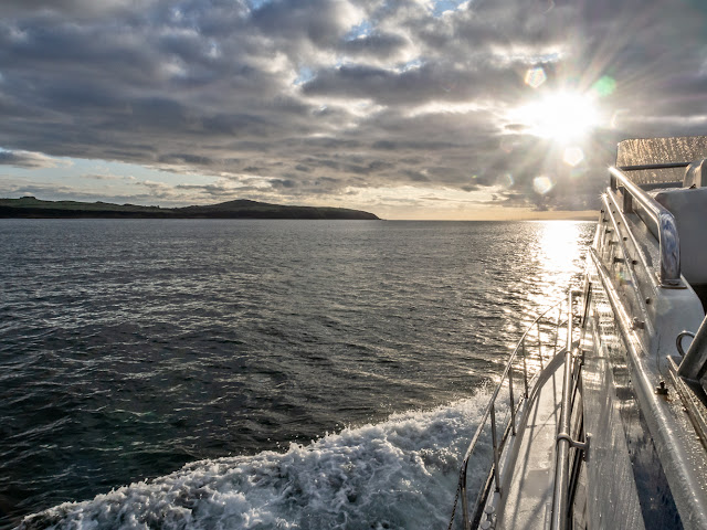 Photo of Ravensdale returning home from Scotland