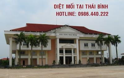 diet moi tai thai binh