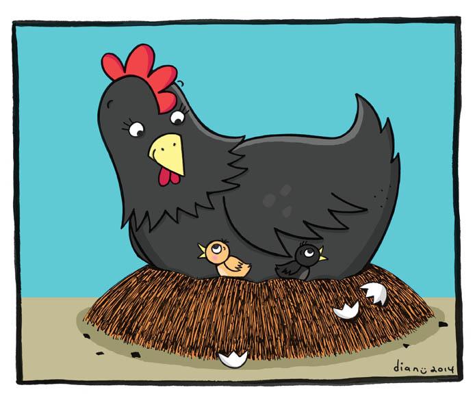 gambarnya aldriana keluarga kecil si ayam kampung
