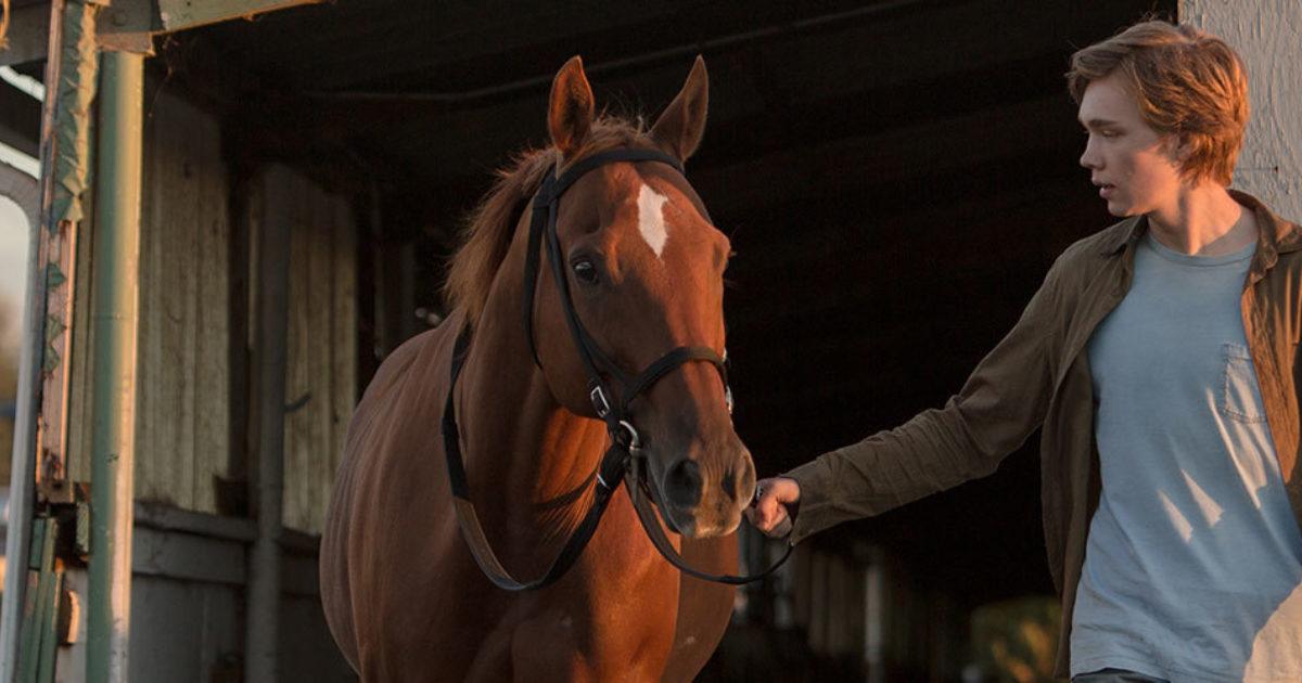 Que acontecem charley os por cavalos