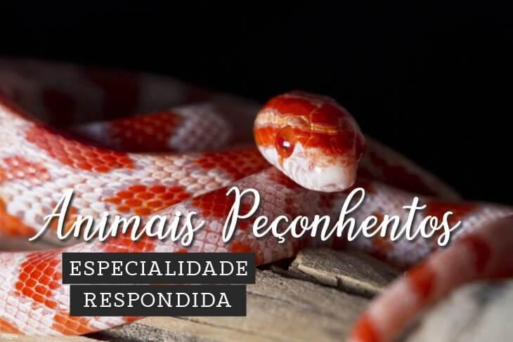Especialidade-de-Animais-Peconhentos-Respondida