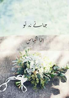 Jane Na Tu (Complete Novel) By Ana Ilyas Pdf Free Download
