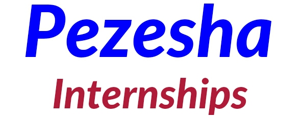 Pezesha internships program 2018/2019