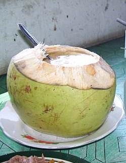 Es kelapa muda Watu ulo