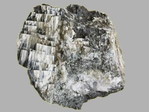 Steinbruch Muckenberg