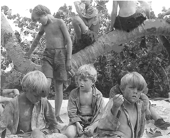 an introduction to the essy on the movie lord of the flies Free summary and analysis of the events in william golding's lord of the flies that won't make you snore we promise.