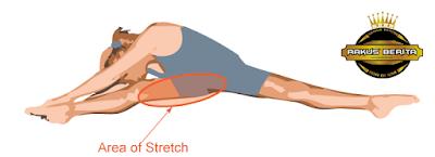 Basic Leg Stretch