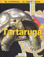 libri sulle tartarughe per bambini