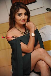 Kannada Actress Karunya Ram Stills in Strapless Green Short Dress at Eradu Kanasu Movie Press Meet  0005.jpg