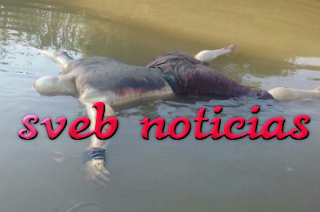 Hallan cuarto cuerpo ejecutado flotando en Rio Papaloapan en Tlacotalpan
