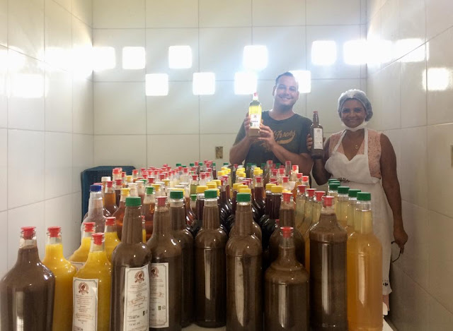 Produção de licores gera aumento de renda para agricultores familiares baianos no período junino