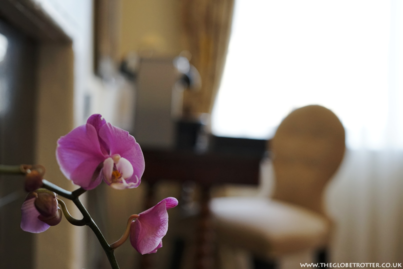 Orchid flower in our room at the Macdonald Bear Hotel