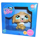 Littlest Pet Shop Special Labradoodle (#1701) Pet