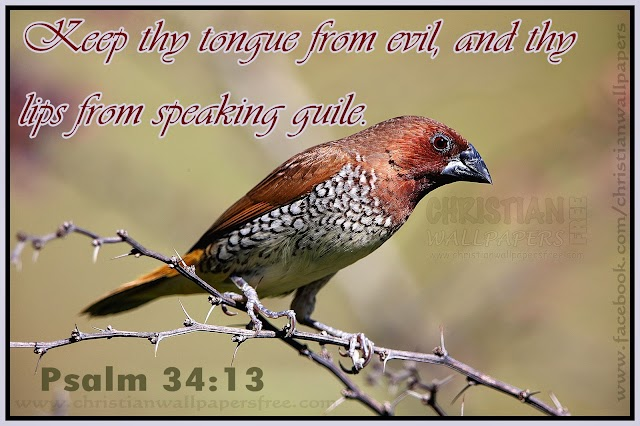 Keep thy tongue from evil, and thy lips from speaking guile.