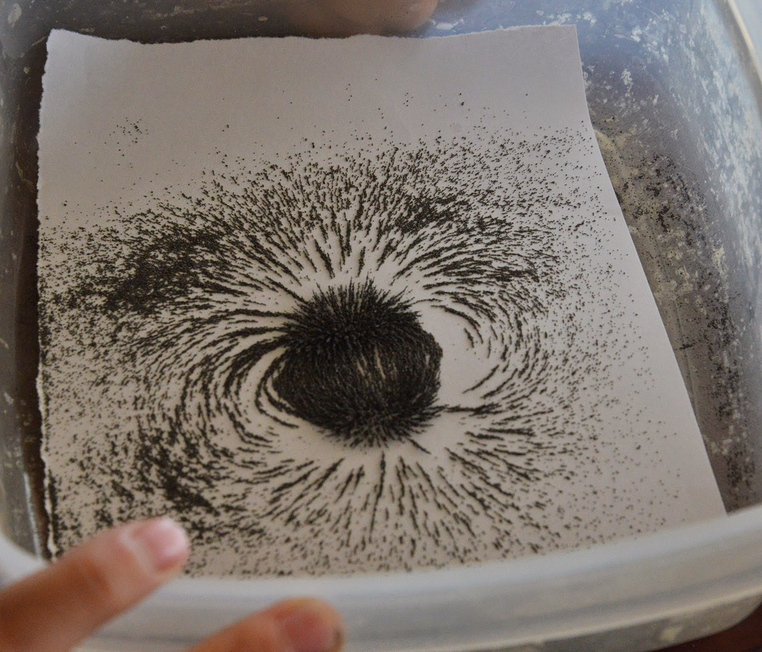 A School Of Fish Magnet Play 2 D Magnetic Fields