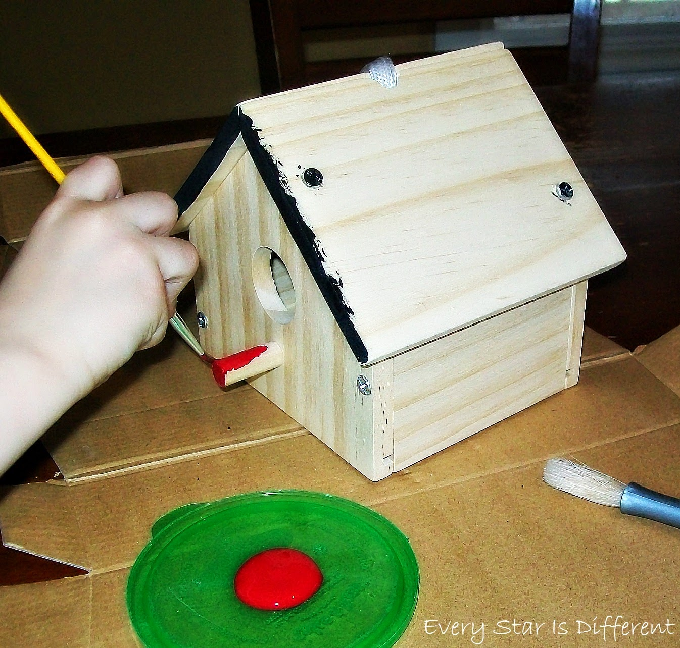 Painting Bird House