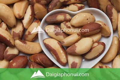 Hạt Hạch Brazil - Brazil Nuts - Dai Gia Pho Nui