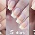 Sumerge tus uñas en estos dos productos caseros y crecerán sin parar, lucirán como nunca antes