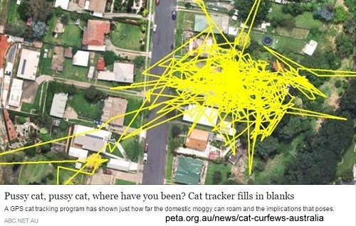 http://www.abc.net.au/news/2016-05-20/cat-tracking-program-makes-owners-re-think-pet-behaviour/7431248
