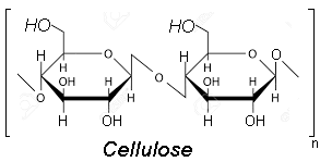 Cellulose structure image.