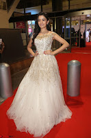 Rukshar Mir designer Anarkali Gown at 64th Jio Filmfare Awards South  2017 ~  Exclusive 081.JPG