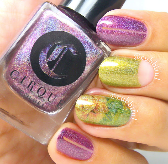 Cirque Colors Bourdoir