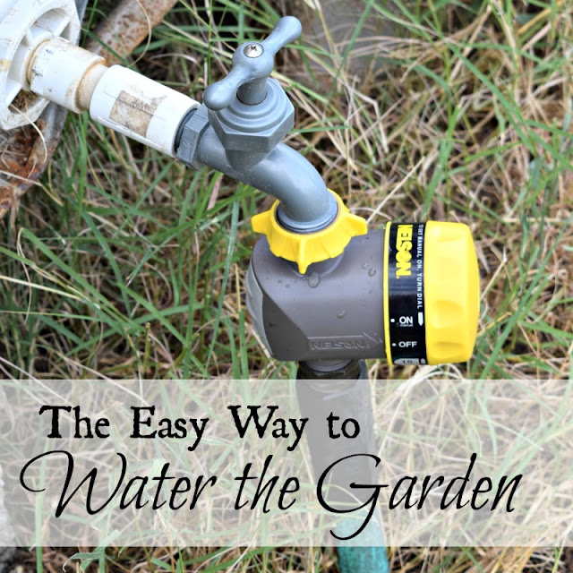 The easy way to water the garden.