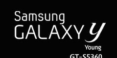 Cara Mengatasi Galaxy Young GT-S5360 Bootloop