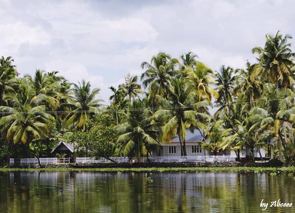 casa-in-Kerala