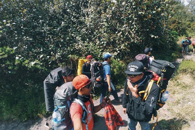 Para pendaki gunung Semeru melewati jalur pendakian