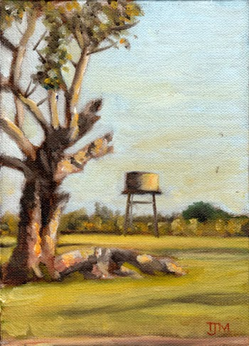 Oil painting of a eucalyptus tree and a water tank in the late afternoon sun at Pipers Creek, Victoria, Australia.