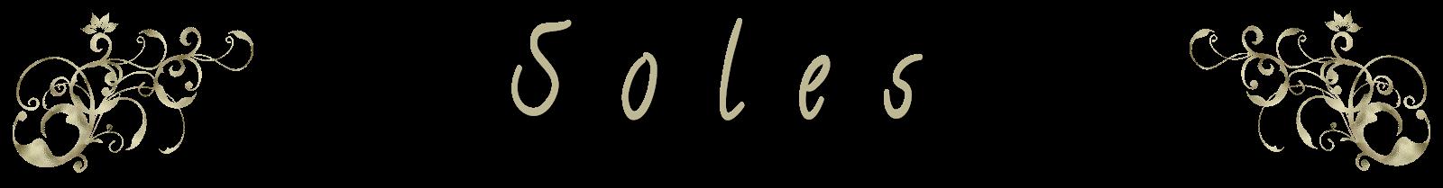 http://wikiferia.blogspot.com.es/2015/08/soles.html