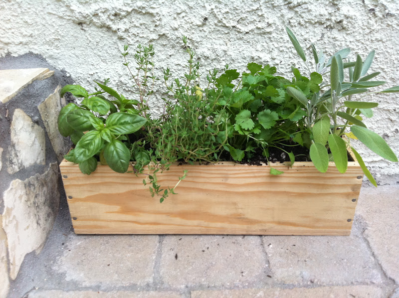 1 Empty Wooden Wine Box Any Size Will Do Depending On What E You Have In This Photo I Ve Used A Single Bottle Drill Dirt Gravel Herbs Or Seeds