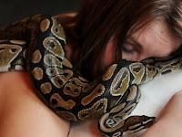 Pernyataan Dokter Bikin Wanita Ini Syok Gara-Gara Setiap Malam Tidur Dengan Ular