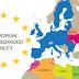 Η Ευρωπαϊκή Πολιτική Γειτονίας και οι παθογένειες της
