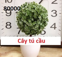 Phu kien hoa pha le o Co Nhue 1